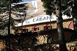 La Cabane Cedars and Bcharreh Lebanon - Nested among the trees