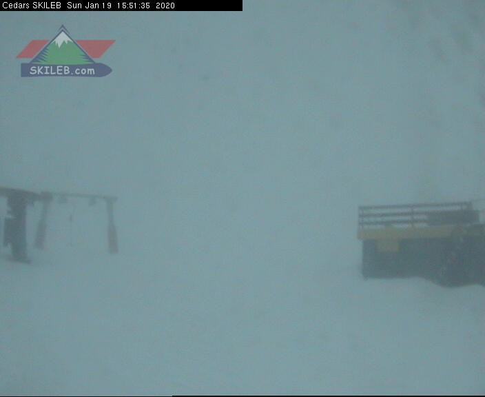 CEDARS webcam