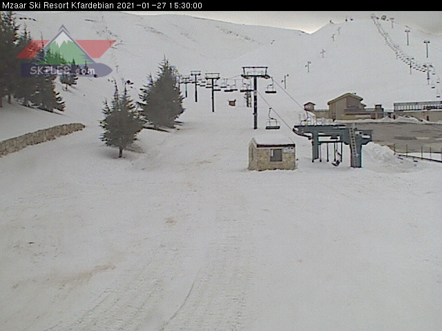 FARAYA webcam