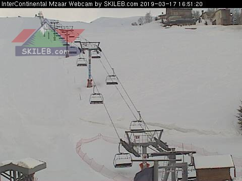 REFUGE webcam